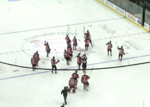 Devils stick salute